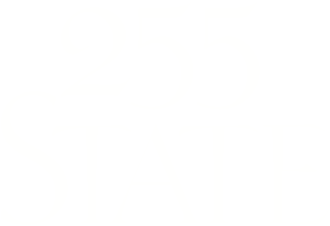 footer 255 state logo